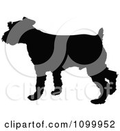 Clipart Black Silhouette Of A Schnauzer Dog Profile Royalty Free Vector Illustration