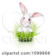 Clipart White Albino Bunny Albino Looking Through Grass Royalty Free Vector Illustration