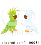 Clipart Green Parrot And White Cockatoo Royalty Free Vector Illustration