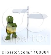 3d Tortoise Standing By And Pointing At Street Signs