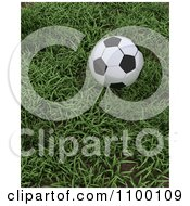 Clipart 3d Soccer Ball At Rest In Green Grass Royalty Free CGI Illustration