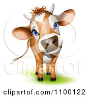 Clipart Cute Curious Jersey Cow Cocking Its Head Royalty Free Vector Illustration by Oligo