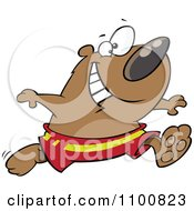 Clipart Happy Bear Running In Swim Trunks Royalty Free Vector Illustration by toonaday