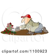 Clipart Man Raking Dirt In A Flower Garden Royalty Free Vector Illustration