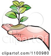 Clipart Hand Holding A Plant In Soil Royalty Free Vector Illustration