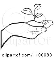 Clipart Outlined Human Hand Holding A Plant In Soil Royalty Free Vector Illustration by Lal Perera #COLLC1100983-0106
