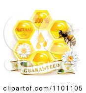 Clipart Honey Bee Over Honeycombs With Daisies And A Guaranteed Banner Royalty Free Vector Illustration by merlinul