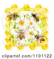Clipart Honey Bees On Daisies Clovers And Honeycombs Royalty Free Vector Illustration by merlinul