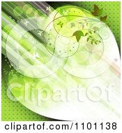 Clipart Diagonal Streaks Of Green Light With Butterflies And Vines Royalty Free Vector Illustration