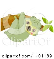 Clipart Happy Cute Sloth Hanging On A Tree Branch Royalty Free Vector Illustration by Pushkin