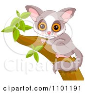 Clipart Happy Cute Galago Bushbaby In A Tree Royalty Free Vector Illustration
