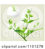 Clipart Leaf Butterfly And Chat Balloon Over Green Birds On A Branch Over Beige Royalty Free Vector Illustration by creativeapril