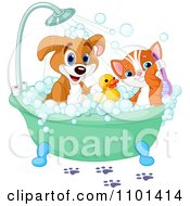 Clipart Cute Happy Puppy And Cat Bathing With A Rubber Duck Royalty Free Vector Illustration