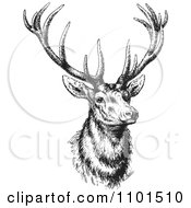 Clipart Retro Black And White Buck Deer Royalty Free Vector Illustration by BestVector #COLLC1101510-0144