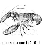 Clipart Retro Black And White Crayfish Royalty Free Vector Illustration