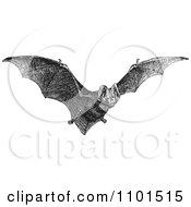 Clipart Retro Black And White Flying Bat Royalty Free Vector Illustration