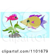 Pink And Brown Fish By An Aquatic Plant