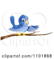 Clipart Happy Blue Bird Pointing On A Bare Tree Branch Royalty Free Vector Illustration by AtStockIllustration
