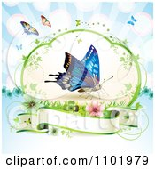 Clipart Blue Butterfly Over A Blank Banner Against Blue Royalty Free Vector Illustration