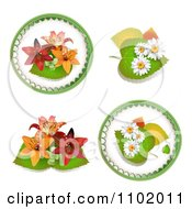 Clipart Lily And Daisy Design Elements Royalty Free Vector Illustration by merlinul
