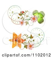 Clipart Shamrock Daisy And Lily Design Elements Royalty Free Vector Illustration