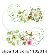 Clipart Ladybug Daisy And Lily Design Elements Royalty Free Vector Illustration