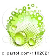 Clipart Dew On Green Halftone And Circles Royalty Free Vector Illustration