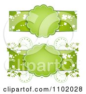 Clipart Green St Patricks Day Banners With Frames Vines And Shamrocks Royalty Free Vector Illustration