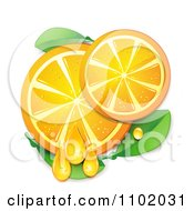 Juicy Orange Slices And Leaves On White
