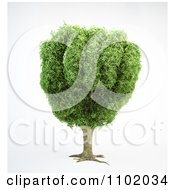 Clipart 3d Tree With A Fist Shaped Canopy Royalty Free CGI Illustration by Mopic
