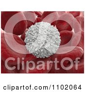 Clipart 3d White Blood Cell With Red Cells Royalty Free CGI Illustration