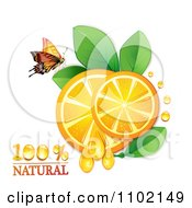 Clipart Natural Orange Slices And A Butterfly On White 1 Royalty Free Vector Illustration