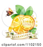 Clipart Natural Orange Slices And A Butterfly On White 2 Royalty Free Vector Illustration