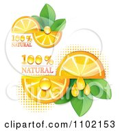 Clipart Natural Orange Slices Over Halftone And Circles On White 2 Royalty Free Vector Illustration