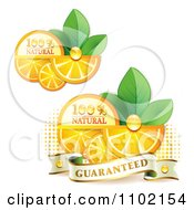 Clipart Natural Orange Slices Over Halftone And Circles On White 3 Royalty Free Vector Illustration