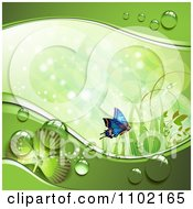 Clipart St Patricks Day Background Of A Blue Butterfly Grass Sunlight Shamrocks And Dew 1 Royalty Free Vector Illustration