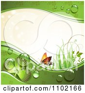 Clipart St Patricks Day Background Of An Orange Butterfly Grass Sunlight Shamrocks And Dew 1 Royalty Free Vector Illustration