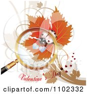 Valentines Day Text Under A Magnifying Glass Over A White Heart Spotted Ladybug