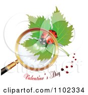 Valentines Day Text Under A Magnifying Glass Over A Heart Spotted Ladybug 1
