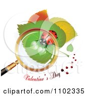 Valentines Day Text Under A Magnifying Glass Over A Heart Spotted Ladybug 2