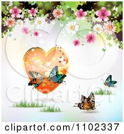 Butterfly Daisy Blossom And Picture Valentines Day Background