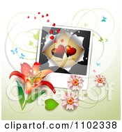 Butterfly Daisy Lily And Heart Picture Valentines Day Background