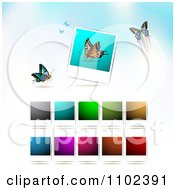 Clipart Instant Photo And Butterfly Background 5 Royalty Free Vector Illustration