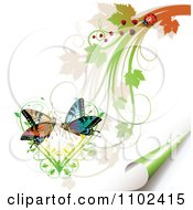 Clipart Butterfly Pair Over A Vine Heart With Foliage A Ladybug And Turning Page Royalty Free Vector Illustration