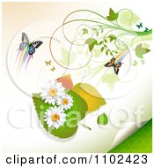 Clipart Butterfly Daisy And Leaf Background 1 Royalty Free Vector Illustration