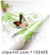 Clipart Butterfly On A Turning Green Page 2 Royalty Free Vector Illustration by merlinul