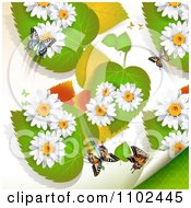 Clipart Butterfly Daisy And Leaf Background 3 Royalty Free Vector Illustration