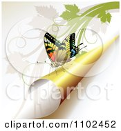 Clipart Butterfly On A Turning Yellow Page 1 Royalty Free Vector Illustration by merlinul
