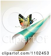 Clipart Butterfly On A Turning Turquoise Page Royalty Free Vector Illustration by merlinul