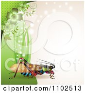 Clipart Locust Cricket Or Grasshopper With Grass And Clovers On Beige Royalty Free Vector Illustration by merlinul